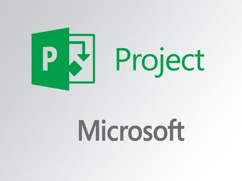 Day8: Setting to Export the Timeline to PDF format in Microsoft Project