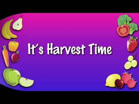 It's Harvest Time | KARAOKE VERSION | harvest songS for schools and children