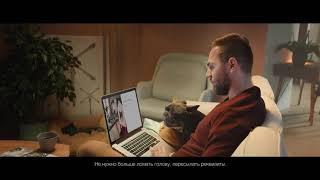 Аренда собак для съемок в кино, рекламе, на тв, и фотосессийI8(916)702-11-08 Москва