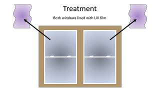 Ultraviolet-Reflective Film Reduces the Risk of Bird-Window Collisions (ABS 2020 Presentation)