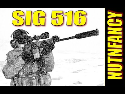 Sig 516: Isn't This Supposed to Be Awesome? [Full Review]
