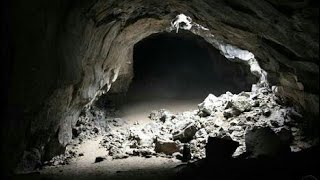 Inside the Cave , Darkness , Dangerous, Animals inside, Cave