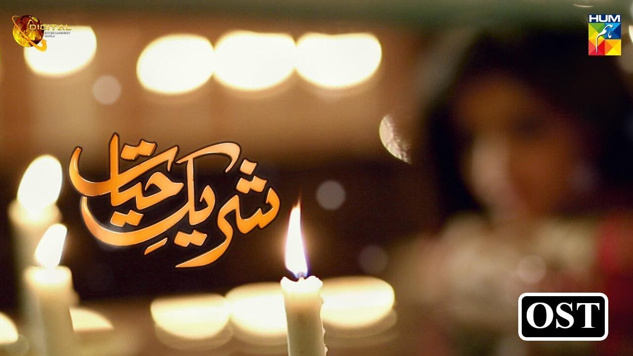 Shareek E Hayat   HUM TV OST   Mawra Hocane   Danish Taimoor   Gaane Shaane