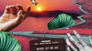 Baixar Yan Pablo DJ feat. Alok, Bruno Martini e Zeeba - Never let me go (FUNK REMIX)