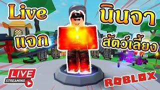 ROBLOX | Ninja Legends | กระโดดนี้เพื่อเธอ เล่นกับFC Ep.169