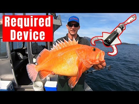 Rockfish Release Device, Fish Descender (Do Not Vent Fish)