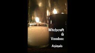 Witchcraft and Voodoo Episode 20 - Animals