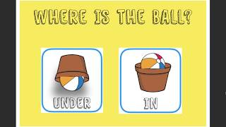 Where is the ball? - Activity