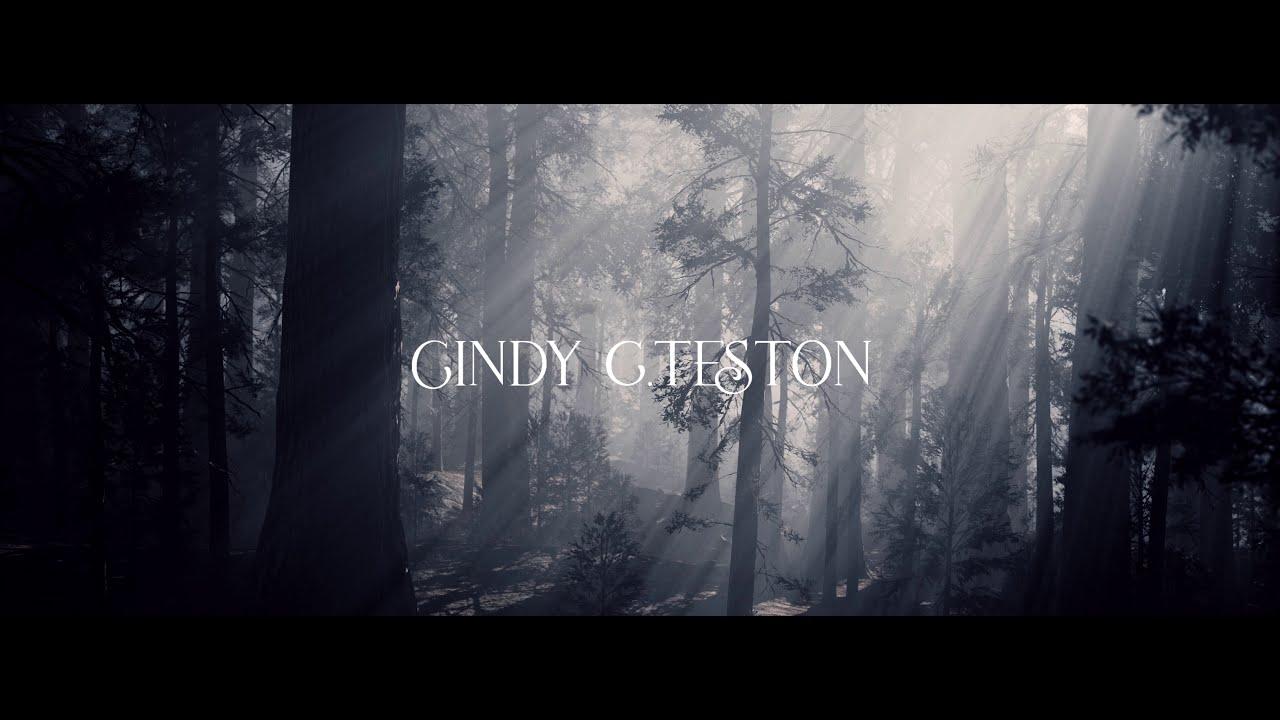 L'ÉVEIL DU PHÉNIX - Cindy C. Teston