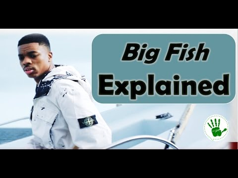Big Fish | Explained | Vince Staples | Theory for hidden meaning