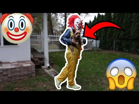"""PENNYWISE THE KILLER CLOWN FROM """"IT"""" TAKES MY DOG!"""