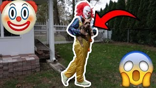 "PENNYWISE THE KILLER CLOWN FROM ""IT"" TAKES MY DOG!"