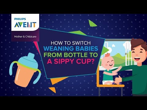 How To Switch Weaning Babies From Bottles To Sippy Cup? Philips Avent Pakistan