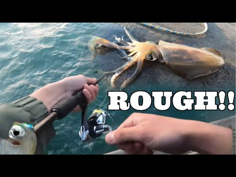 How To Fish In ROUGH DIRTY WATER For Squid At Brighton Jetty (MINOR HOW TO | SPRING)