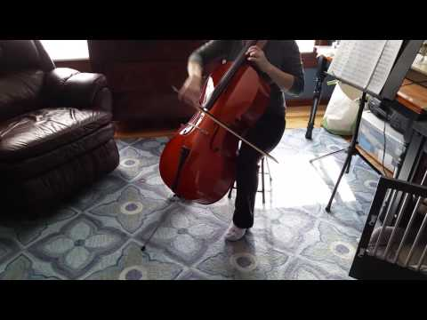 Merano-brand Cello for Sale