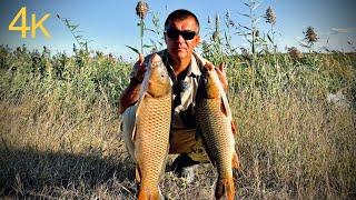 Такие поклёвки... а САЗАНЫ - Мутанты! Рыбалка 2020 озеро.