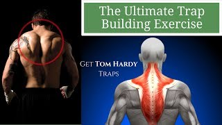 The Ultimate Traps Exercise: Get Traps Like Tom Hardy