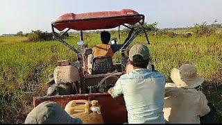 Kubota M6040SU went down to Transporting Rice