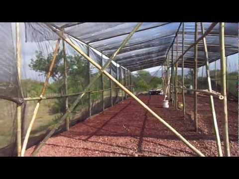 Malla sombra venta por rollo para usarse en gotcha ag for Construccion de viveros