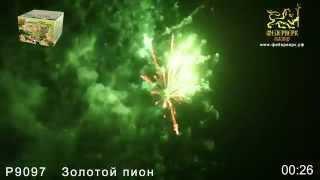 Салют Р9097  Золотой пион