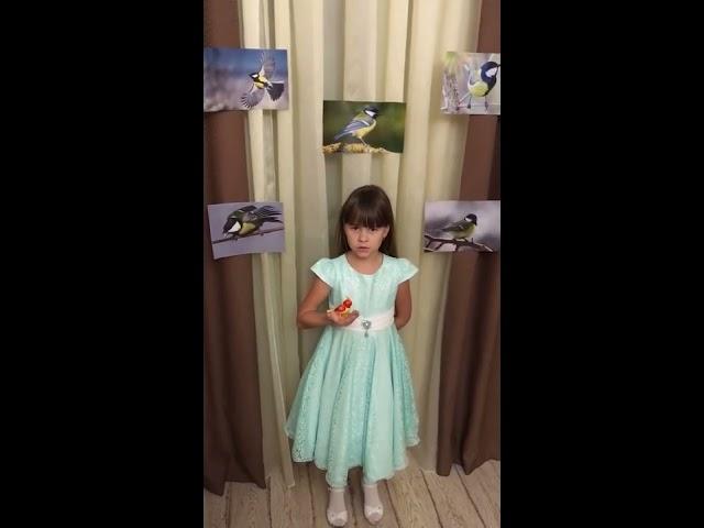 Изображение предпросмотра прочтения – ВасилисаВаричева читает произведение «Синица» И.А.Крылова