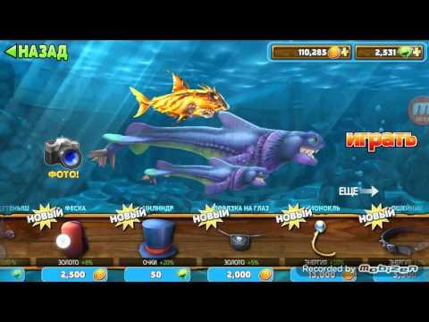 акула серая игра