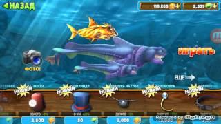 Обзор всех акул в игре Hungry Shark Evolution