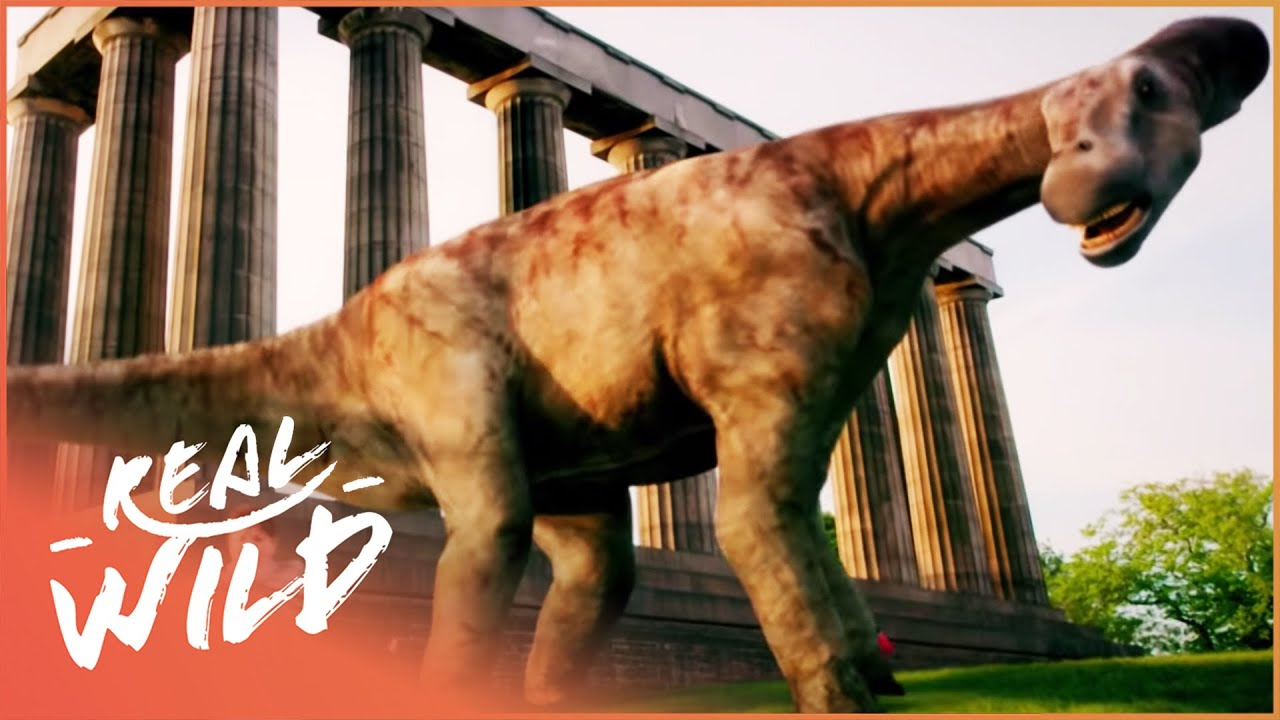 Dinosaur Britain - Episode 2 of 2 [Natural History Documentary] - Real Wild