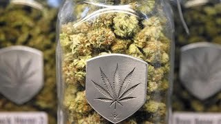 POLL: Will Five States Legalize Recreational Marijuana Today?