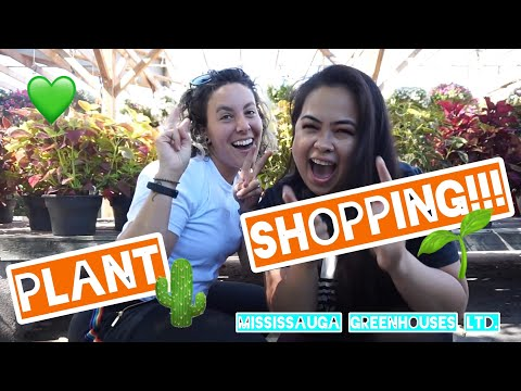 PLANT SHOPPING/ NURSERY TOUR: MISSISSAUGA GREENHOUSES (CANADA)
