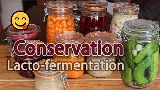 La_lacto-fermentation,_une_methode_de_conservation_sans_danger_et_peu_energivore.
