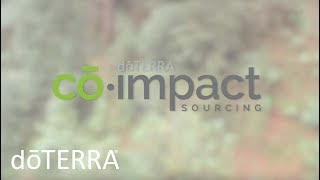 Co-Impact Sourcing by doTERRA Provides the Best Essential Oils and Lifts Entire Communities thumbnail