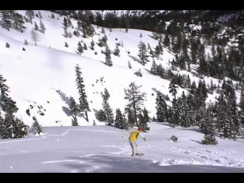Alpine Backcountry and Old Hyw 40 Shuttle Run
