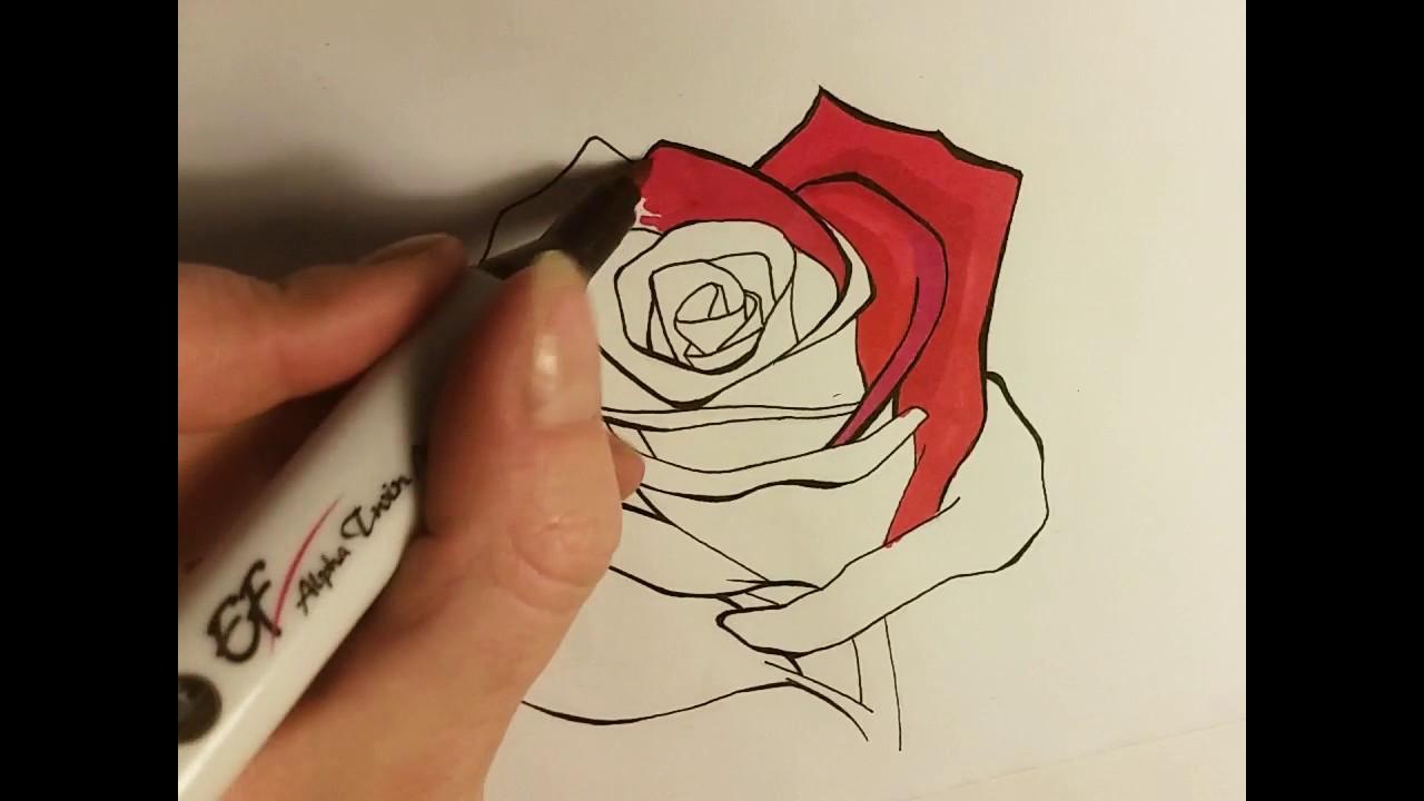 Simple Line Art Rose : A simple rose speedpaint copic alternative alpha marker