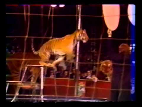 15 international circus fest. Monaco 1990