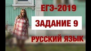 ЕГЭ 2019  Задание 9