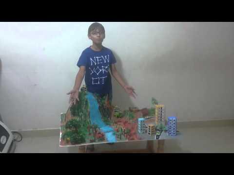 Model of deforestation