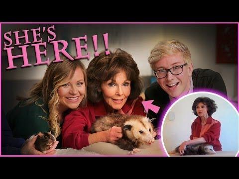 Top That! | How to Massage an Opossum | Viral All Stars