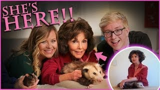 Top That! | How to Massage an Opossum | Viral All Stars