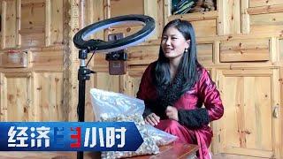 《经济半小时》乡村草根直播逆袭 20200629   CCTV财经