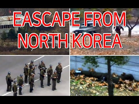 Full footage of North Korean soldier defecting in Joint Security Area / 북한 JSA 탈북 병사 동영상