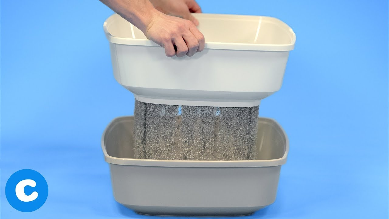 Cat Litter Box Sifter Using Frisco Sifter Litter Boxes Chewy Youtube