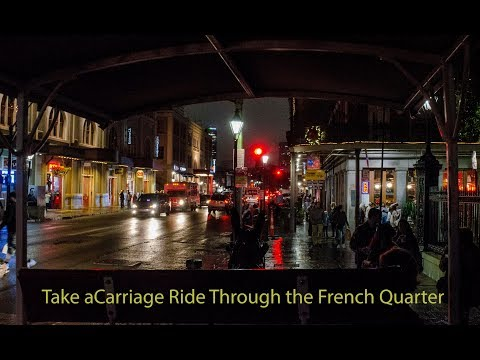New Orleans Carriage Ride: Tour Of The French Quarter