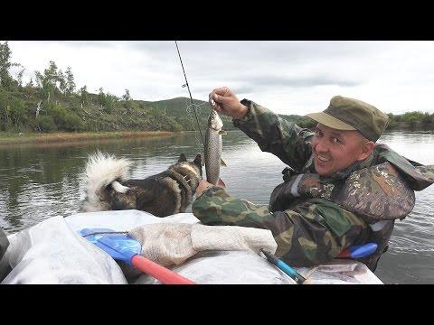 рыбалка на реке нерча видео
