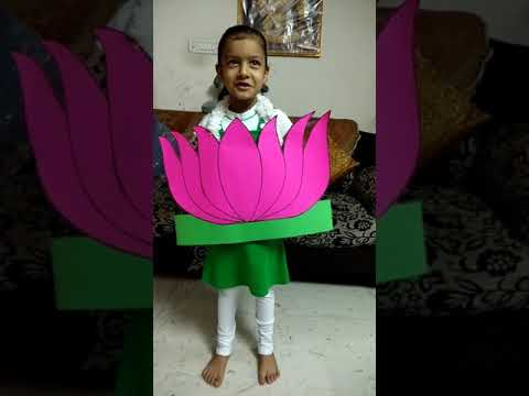 Lines on national flower Lotus