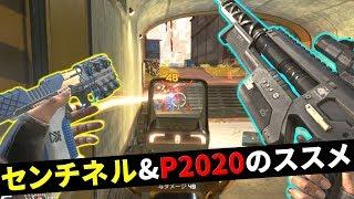 【最強戦術】センチネル ⇒ P2020ハンマーポイントでトドメが強過ぎる件  …