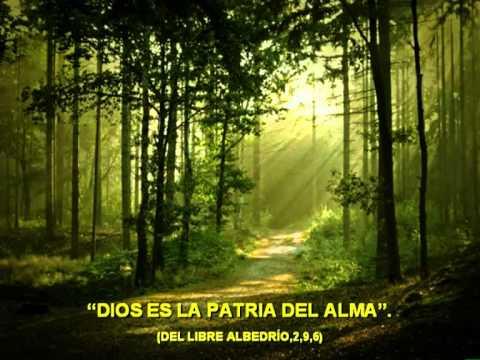 Frases De San Agustin Youtube