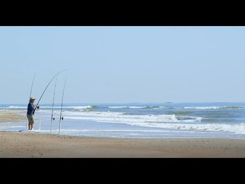 Isle Of Palms Vacation Rentals | Charleston Coast Vacations