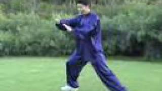 Tai Chi Form 24 Taiji