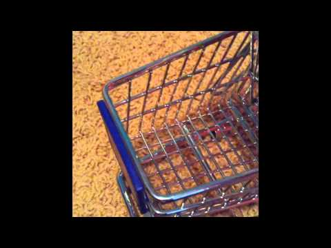 Grocery Shopping:A Barbie Film